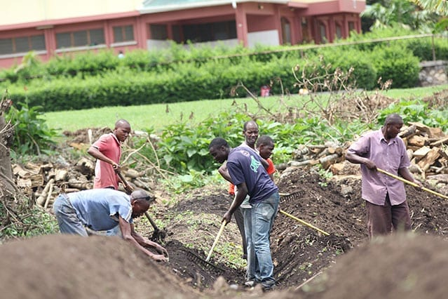 Hard yakka: Lots of team work has gone into the initial stages of our farm, or 'shamba'.