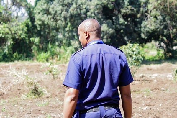 Sunday shock: Head Guard at Smith Campus, Joseph, explains were the elephants travelled.